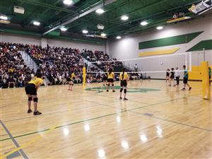 Staff v. Student Volleyball Game