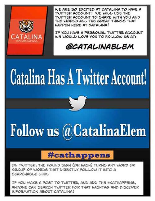 Catalina Twitter Account